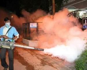 fumigacion dengue chikungunya
