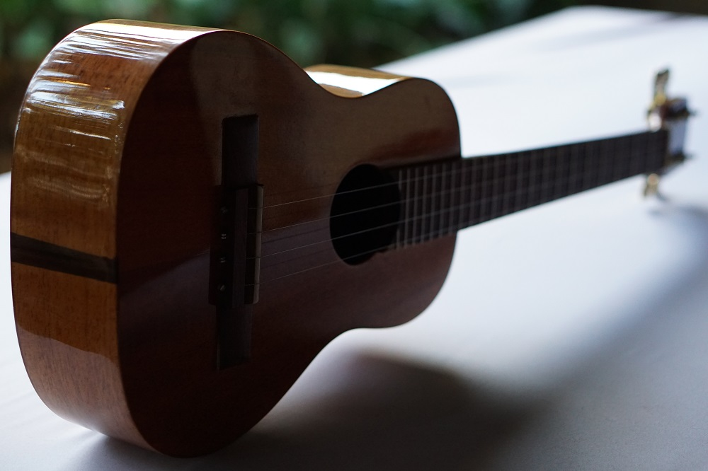 zepeda-basic-guitarrilla-4