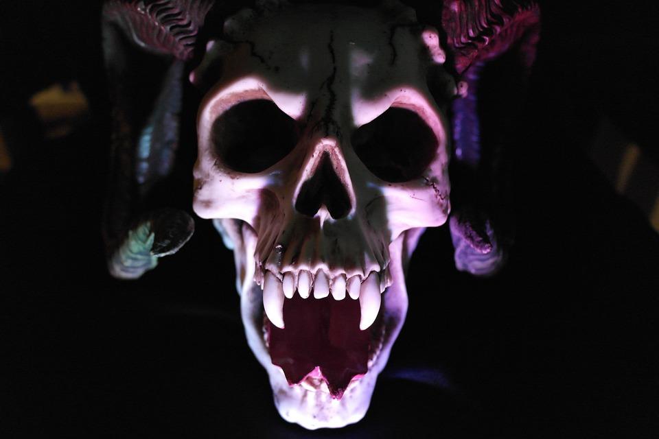 skull-535745_960_720