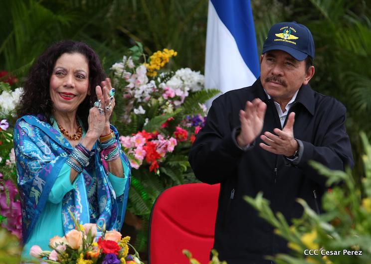 Daniel Y Rosario