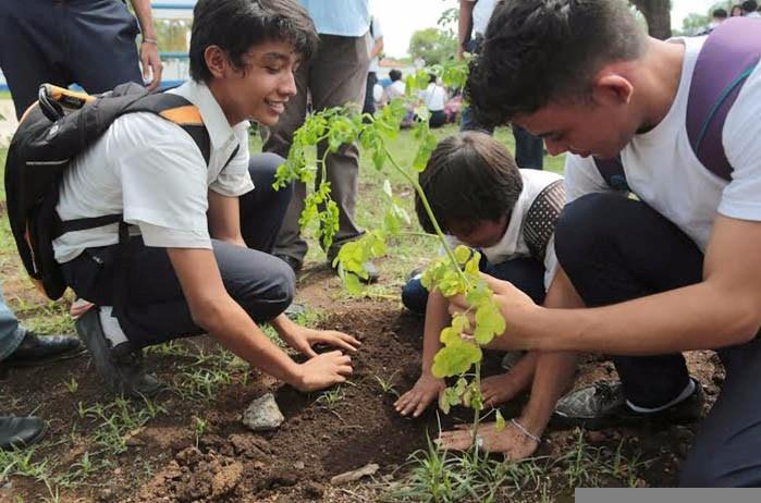 juventud-sembrara-650-mil-plantas-en-este-octubre-victorioso