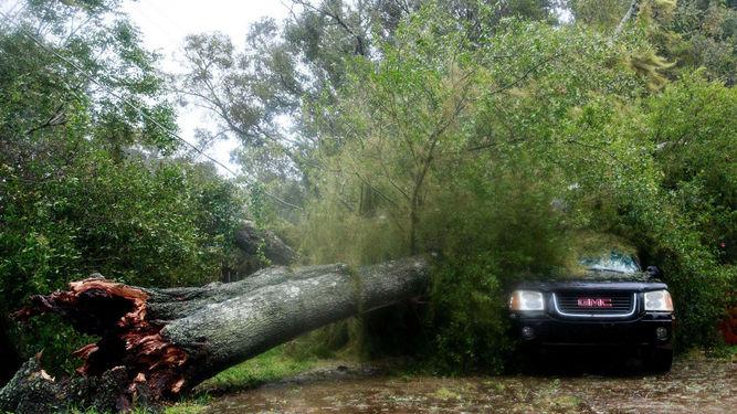 huracan-matthew-golpeaba-viernes-florida_lprima20161007_0016_26