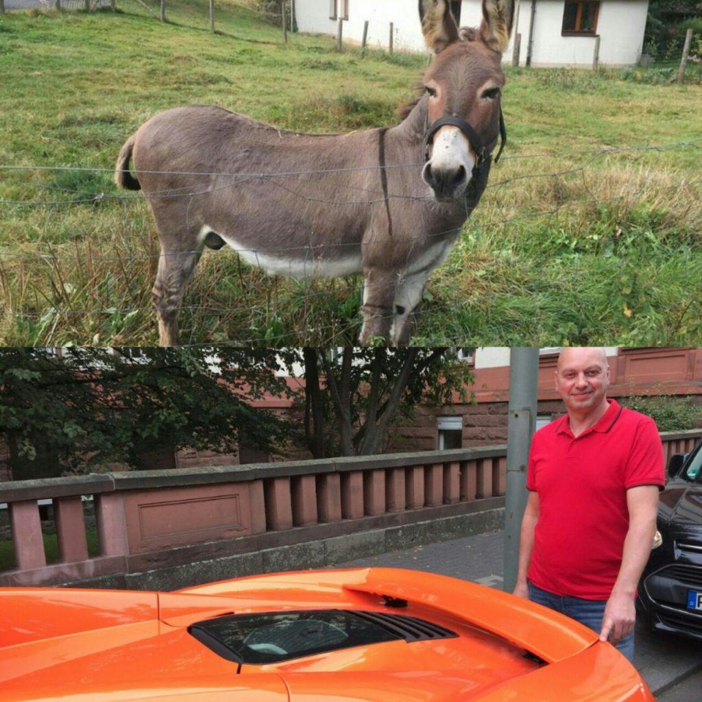 Demandan al dueño de burro que dañó McLaren