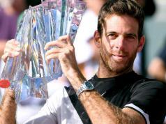 Juan Martín Del Potro derroto a Federer