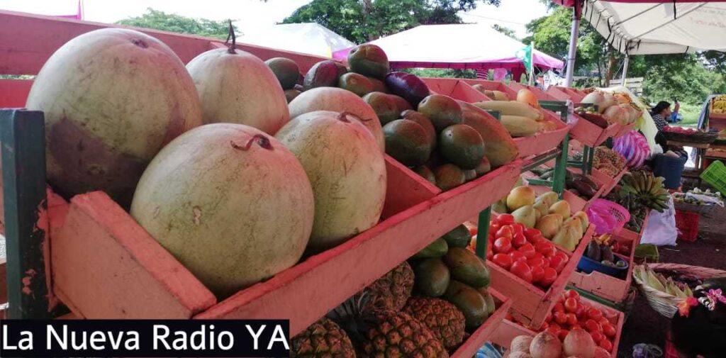 Verduras y Frutas en el Mercado Campesino