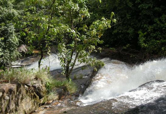Desaparecido es hallado muerto en río de Bonanza, Caribe Norte - Radio YA