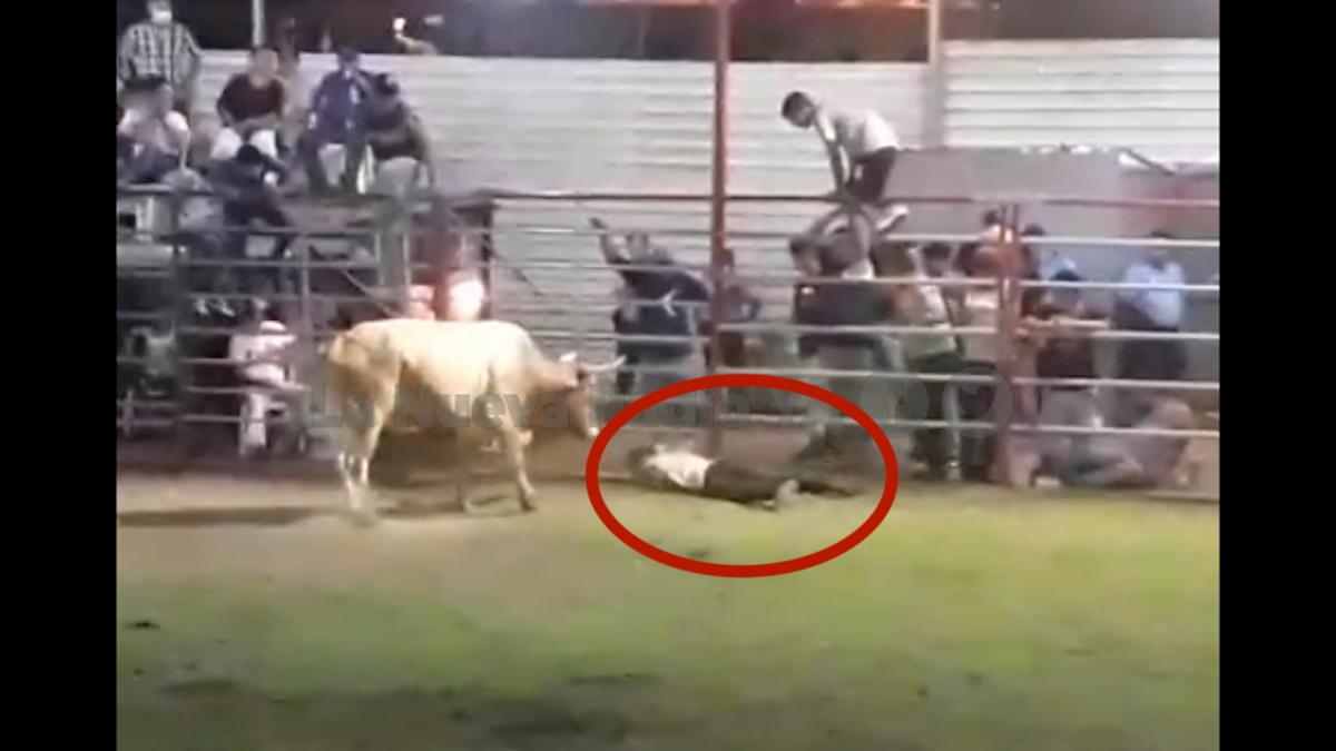 Un hombre murió corneado por un toro en Masatepe